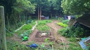 Garten Überblick_635698681327971330_Afterlight_Edit